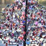 Лопатинский сад-дерево верности