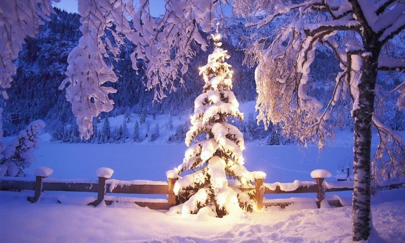А.Вивальди Времена года Зима